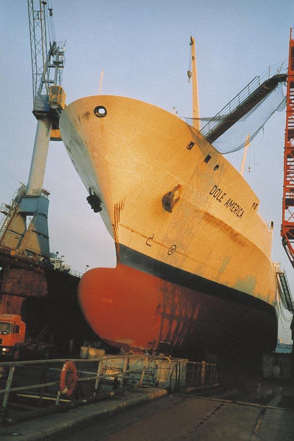 Dole America in dock